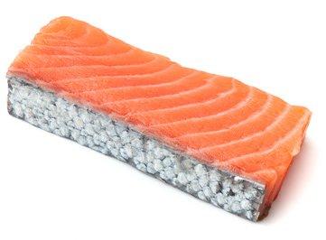 Top 5 Sushi fish sites
